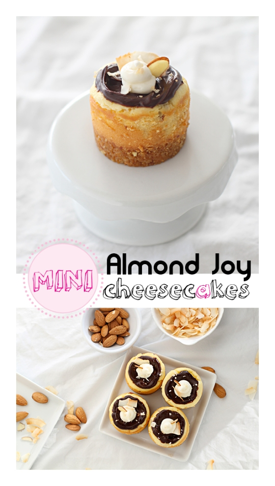 Almond Joy Cheesecakes